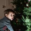Christmas wonder...