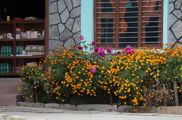 Tea-House Garden