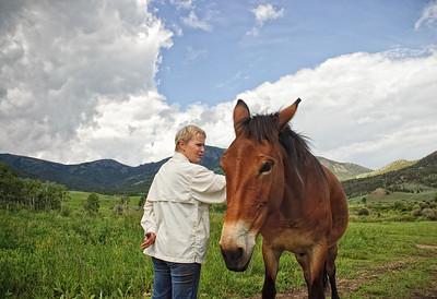 Stermitz Ranch near Gardiner, Montana