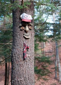 Tree Hunting - 2010