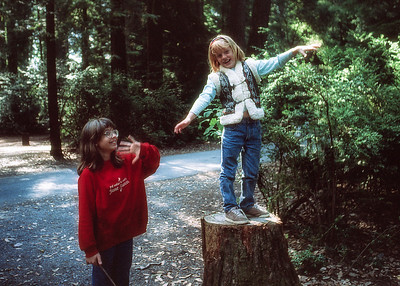 At Jed Smith State Park,1996