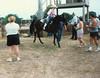 8-4-88 Sabrina Shadow Linda Wayne