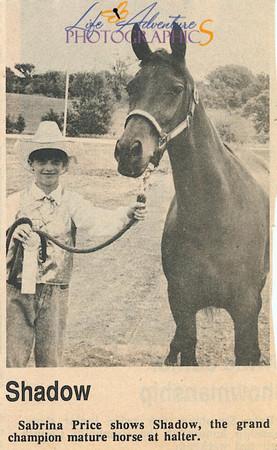 1988 Humboldt Co  Fair Sabrina and Shadow