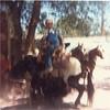 Donny 1986