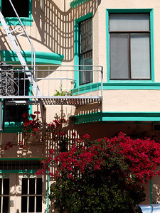 Typical San Fransisco housing in wealthy North Beach.