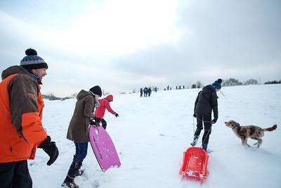 Snow-9741