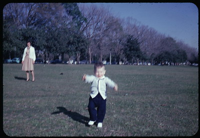 Family history 1962