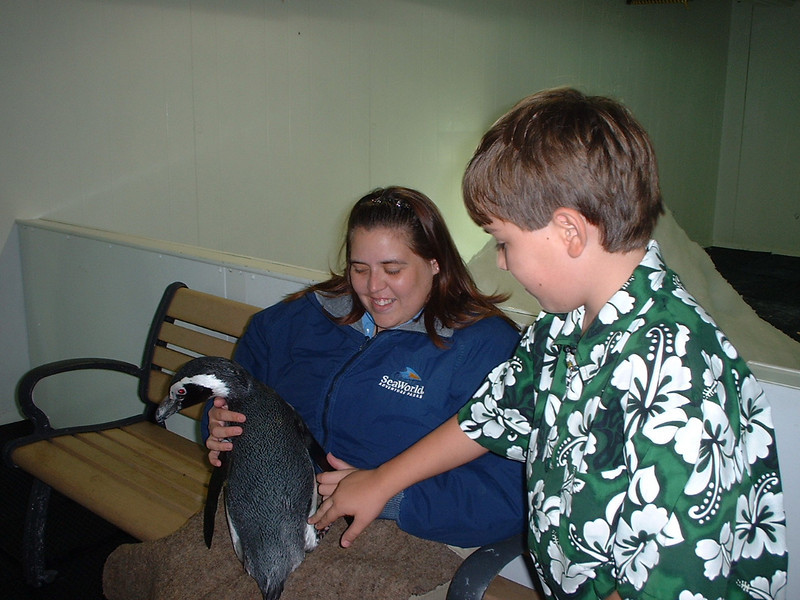 Derek petting penguin