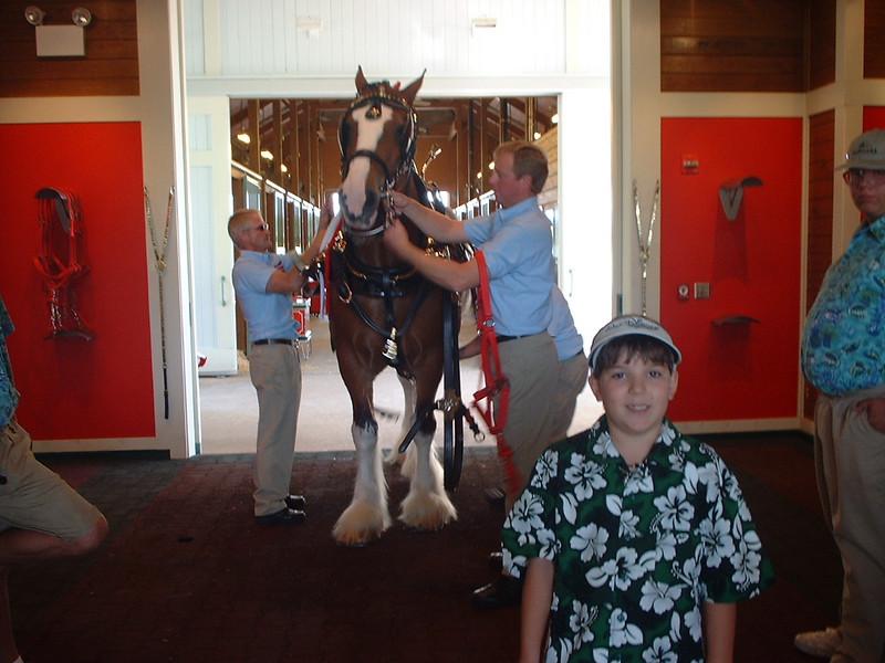 Derek by horse