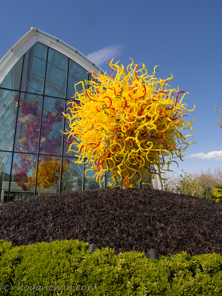 Chihuly - Glass house & Garden