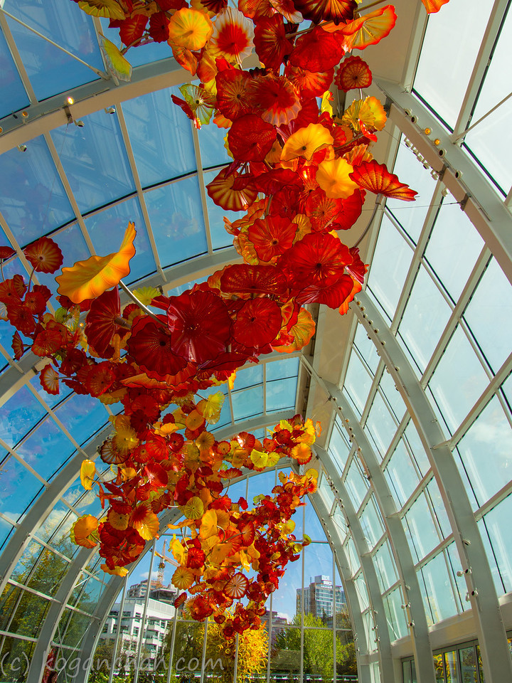 Chihuly - Glasshouse