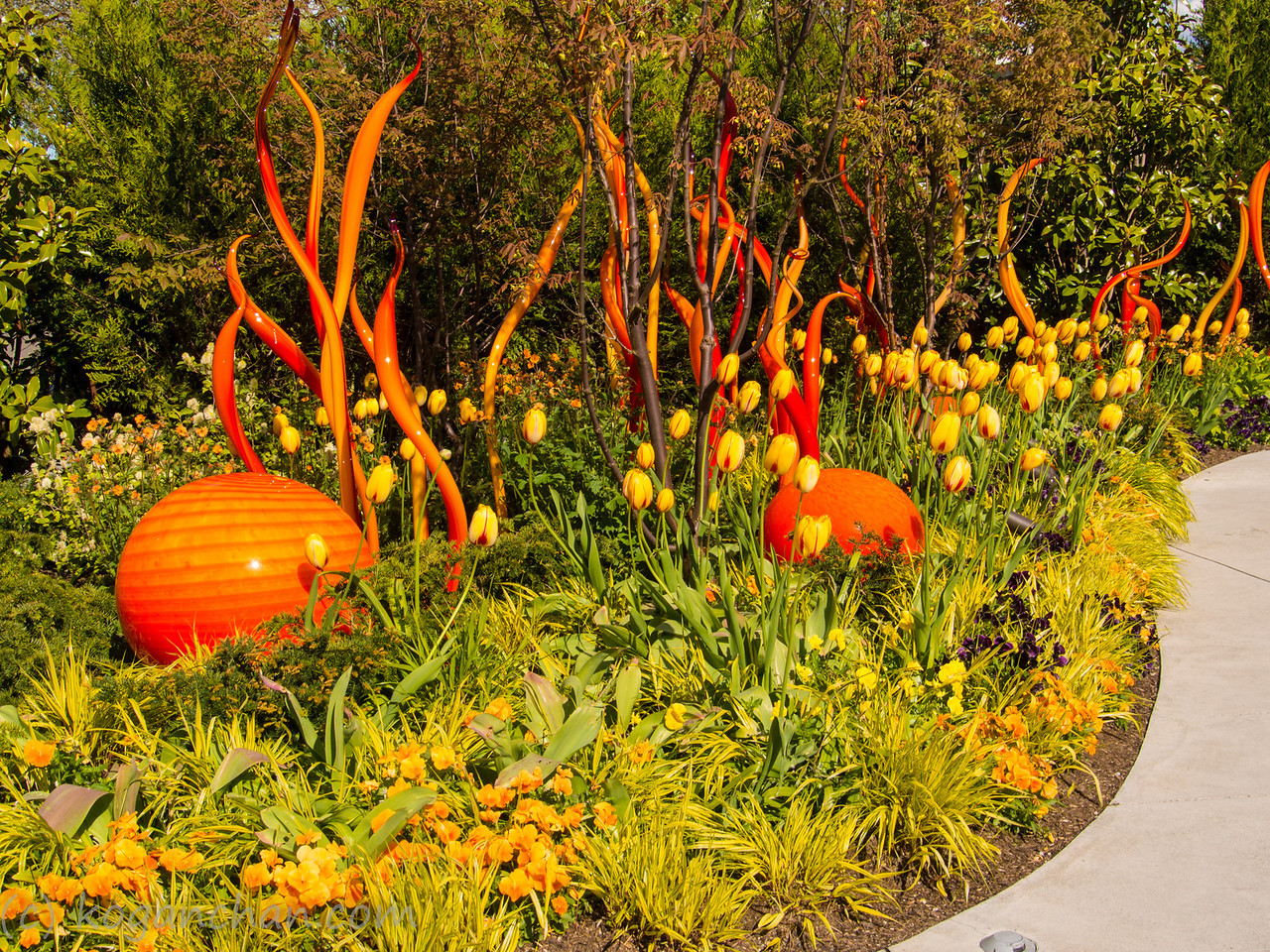 Chihuly - Glass Garden
