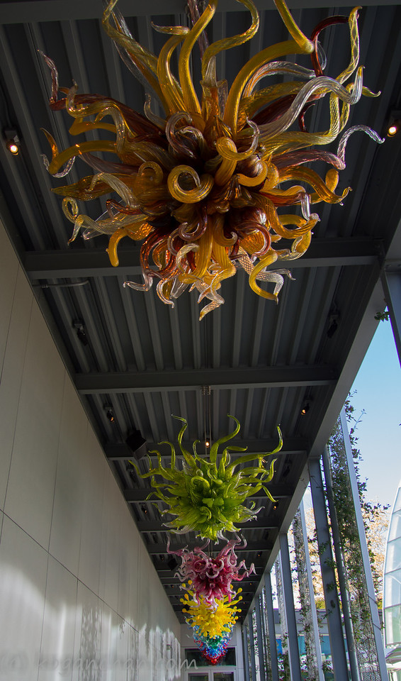 Chihuly - Chandelier Walk