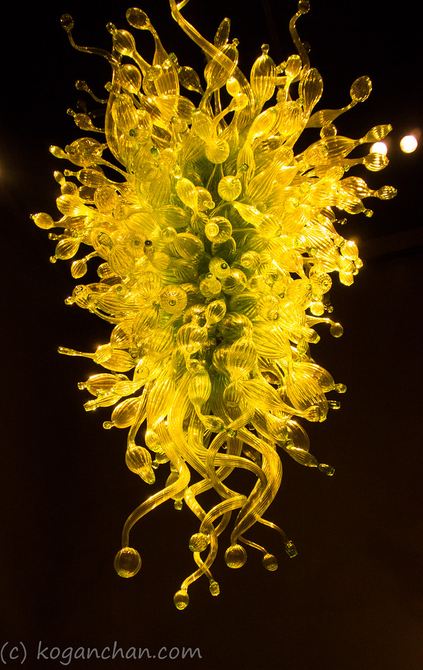 Chihuly - Chihuly Over Venice