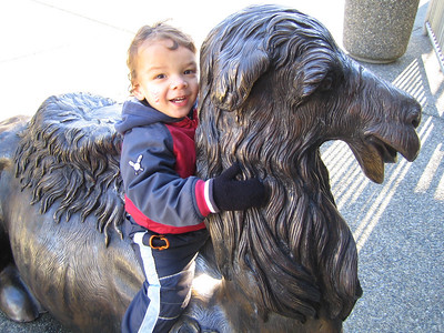 Cougar Mountain Zoo - December 2nd '09
