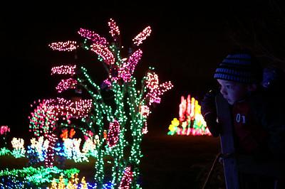 """""""Garden D'Lights"""" in Bellevue"""