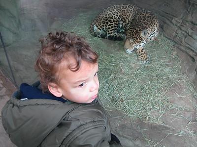 Woodland Park Zoo - December 4th '09
