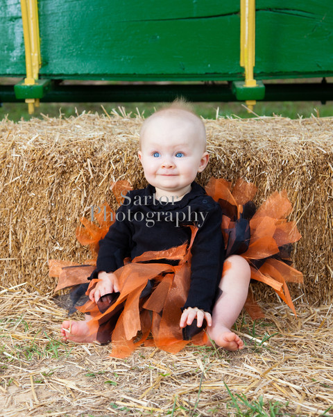 lydia pumpkin patch