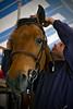 Coach Chris tacking up Lambo @ Bainville<br /> June 3, 2011