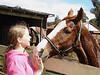 DSC00068 Daniele horse