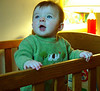 Stella @ 6 months<br /> December 3, 2002