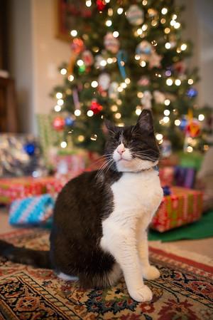 Christmas at Dad's 2015