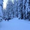 A beautiful, but COLD, ski, at 5 deg.