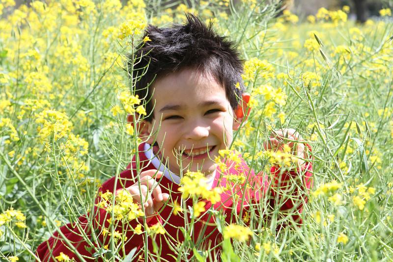154 Ethan among mustard