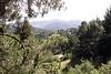 338 Via Floreado view