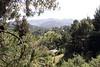 337 Via Floreado view