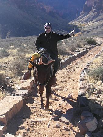 2005-Arizona_GrandCanyonMuleRide
