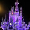 Disney's Magic Christmas Display