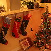 Christmas 08 in FL