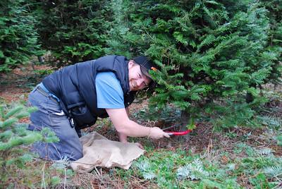 09, Nov 28-Christmas Tree Farm
