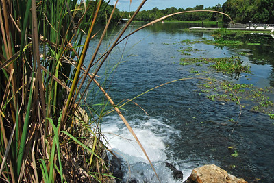 017 Deleon Springs State Park Florida
