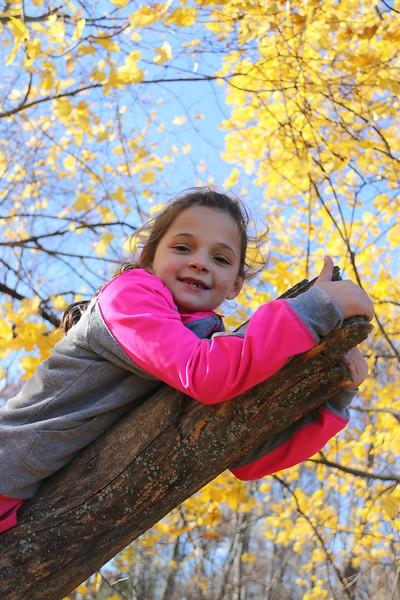 11-11-16 John Street Park with Rylie