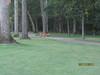 11 September 2011 Golf at Geneva National 005