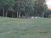 11 September 2011 Golf at Geneva National 004