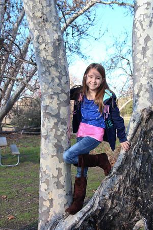 12-29-2012 Reagan Sycamore Grove