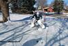 12 February 2012 Jack and Joey Hockey 012