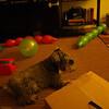 Deprimido porque se acabo la fiesta...