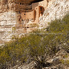 Snapshot gallery of images from the Montezuma Castle Arizona Snapshots. Images Copyright © 2013 J. Andrew Towell All Rights Reserved. Please contact the copyright holder at troutstreaming@gmail.com to discuss any publication or commercial usage rights. Small web use images available upon request with any print order.