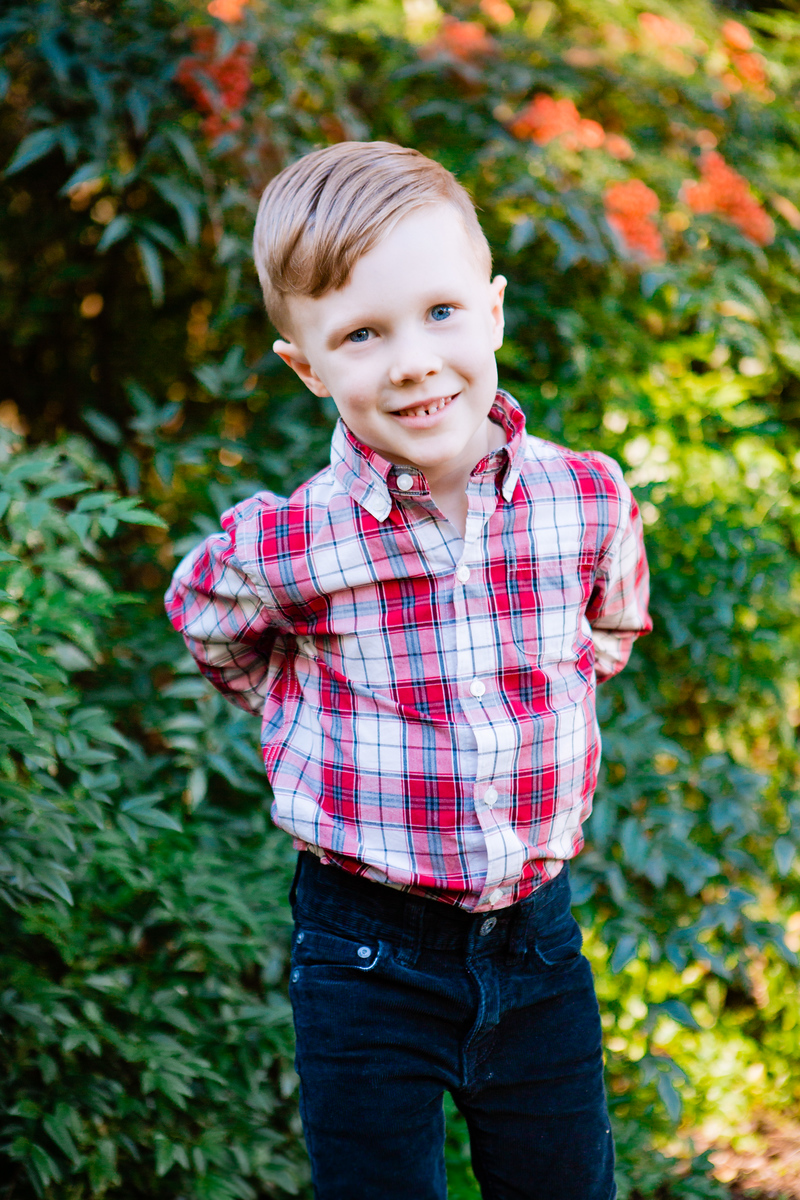 fall mini sessions in the east bay