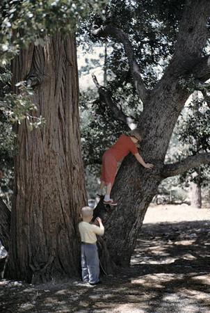 Gary watching Kathy climb tree at Crystal lake.