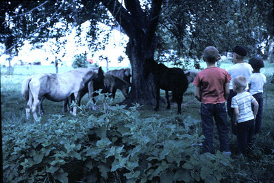 19640601_2_horses_and_kids