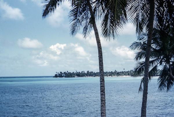 JFO -SLO Jamaica