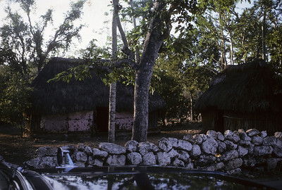 Thatched huts in the Yucatan.  I believe the is is the exterior of the hut where the pottery was painted at the Hacienda Uxmal.