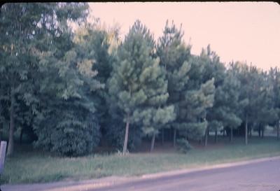 September 1964