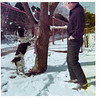 Snow in Dallas, January 1975.  Robby has treed some animal.
