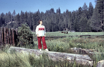 Mom (Pat) camping. Still unsure where this is. Possibly Lake Tahoe or Yellowstone.